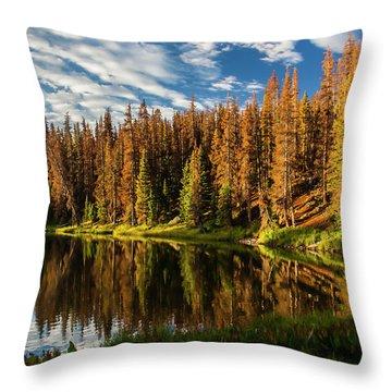Stunning Sunrise Throw Pillow