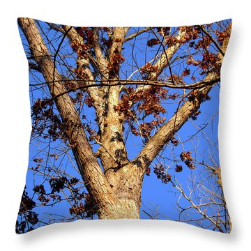 Stunning Tree Throw Pillow