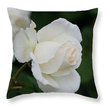 Stunning White Tineke Rose Throw Pillow