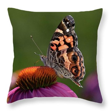 Stunning Wing Pattern - Painted Lady  Throw Pillow
