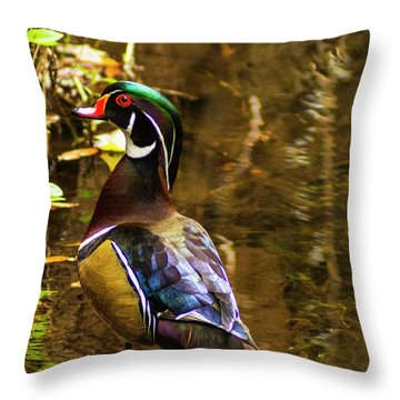 Stunning Wood Duck Throw Pillow