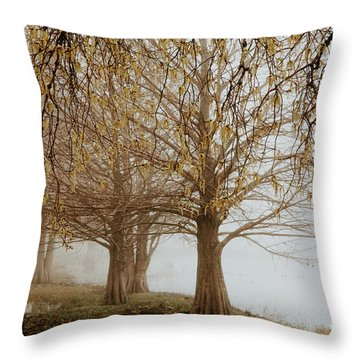 Throw Pillow featuring the photograph Sublime by Iris Greenwell