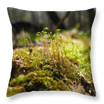 Subtle Beauty Throw Pillow
