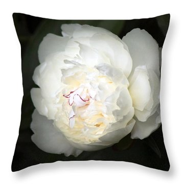 Throw Pillow featuring the photograph Subtle Romance by Deborah  Crew-Johnson