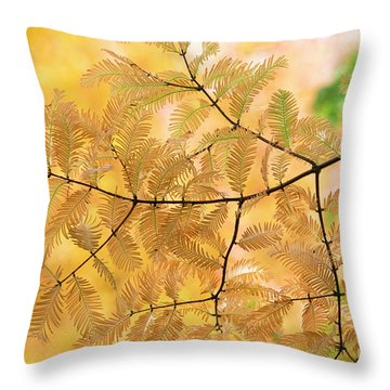 Subtle Shades Of Autumn Throw Pillow