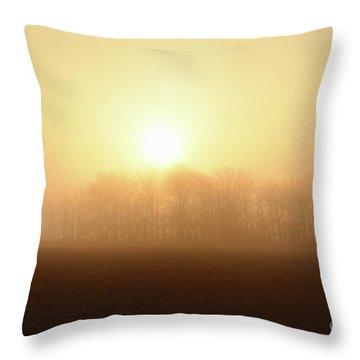 Subtle Sunrise Throw Pillow