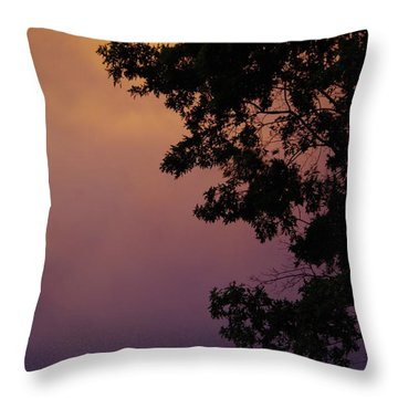 Subtle Sunset Throw Pillow