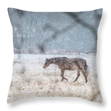 Suburb Of Hamburg.snow Throw Pillow