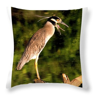 Throw Pillow featuring the photograph Success by Jean Noren