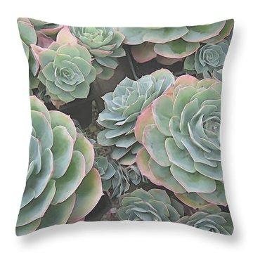 Succulent 2 Throw Pillow by David Hansen