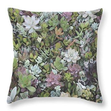 Succulent 8 Throw Pillow by David Hansen