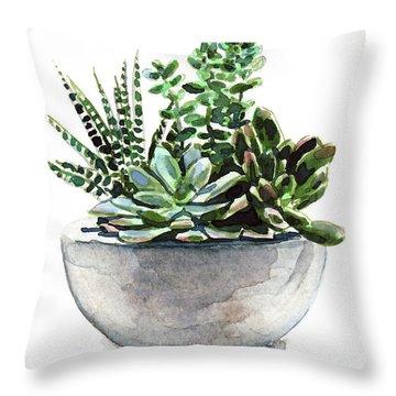 Succulent Arrangement In Modern Planter Throw Pillow