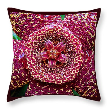 Succulent Flower 13 Carrion Plant Throw Pillow