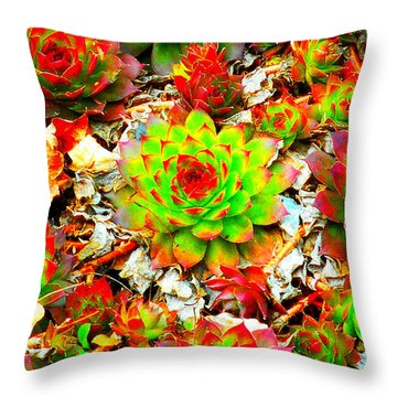 Succulent Hens And Chickens Throw Pillow