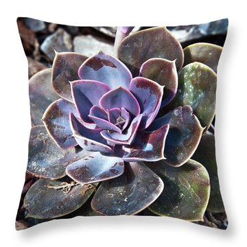 Succulent Plant Poetry Throw Pillow