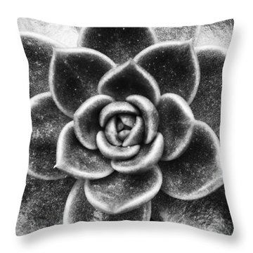 Succulent Symmetry Throw Pillow