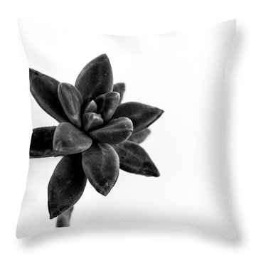 Succulents Flowers Throw Pillow