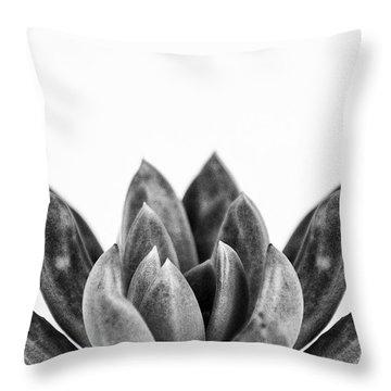 Succulents Flowers Black Throw Pillow