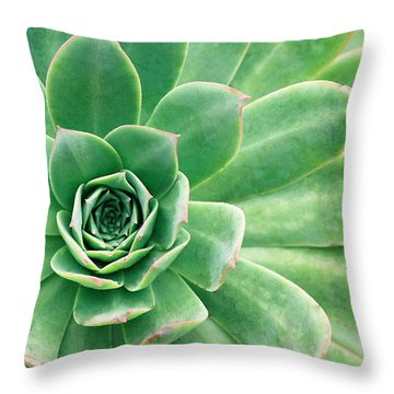 Succulents II Throw Pillow