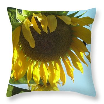 Such A Big Beauty Throw Pillow