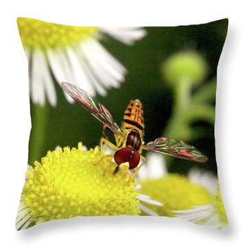 Throw Pillow featuring the photograph Sugar Bee Wings by Meta Gatschenberger