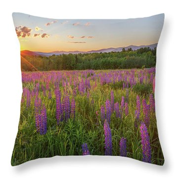 Sugar Hill New Hampshire Lupine Throw Pillow