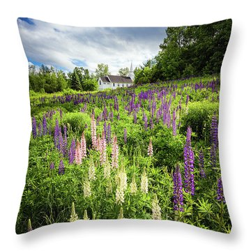 Sugar Hill Throw Pillow