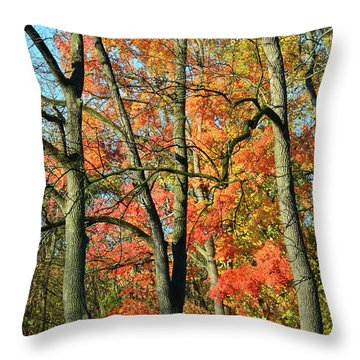 Throw Pillow featuring the photograph Sugar Maple Brilliance by Ray Mathis