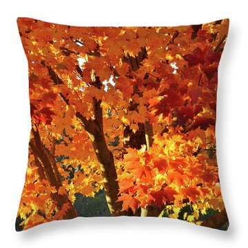 Throw Pillow featuring the photograph Sugar Maple Sunset by Ray Mathis