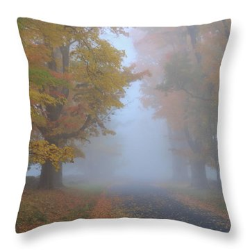 Sugar Maples On A Misty Country Road Throw Pillow by John Burk