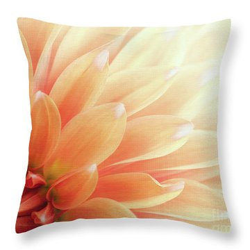 Sugar N Spice  Throw Pillow
