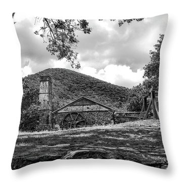 Sugar Plantation Ruins Bw Throw Pillow