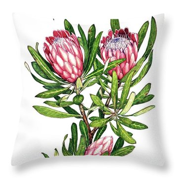 Throw Pillow featuring the painting Sugarbush And The Humming Bird by Heidi Kriel