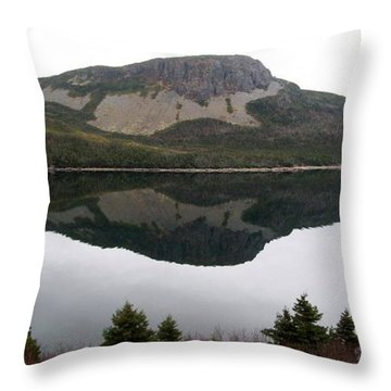 Throw Pillow featuring the photograph Sugarloaf Hill Reflections by Barbara Griffin
