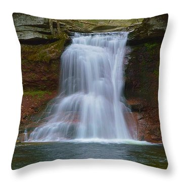 Sullivan Falls Pennsylvania State Game Lands No.13 0485 Throw Pillow