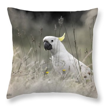 Sulphur Crested Cockatoo Throw Pillow