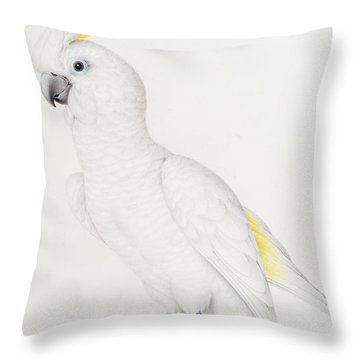 Sulphur Crested Cockatoo Throw Pillow by Nicolas Robert