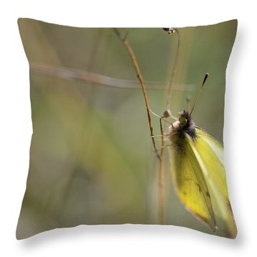 Sulphur Dreams Throw Pillow