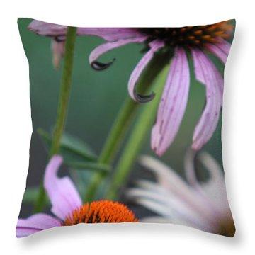 Summer Throw Pillow by Amanda Barcon