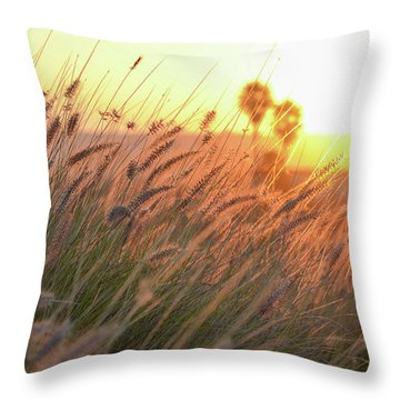 Summer Throw Pillow