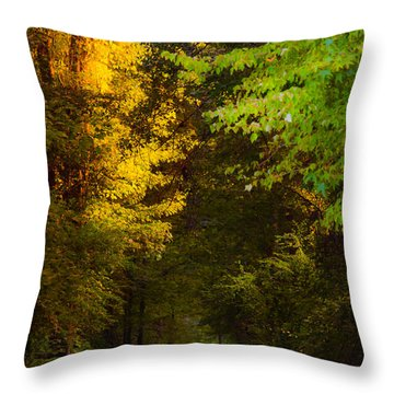 Summer And Fall Collide Throw Pillow