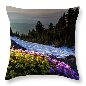 Summer And Winter Throw Pillow