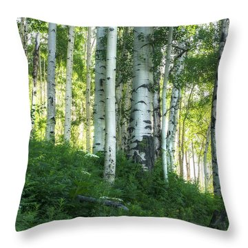 Throw Pillow featuring the photograph Summer Aspen Forest by Tim Reaves