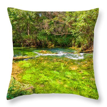 Throw Pillow featuring the photograph Summer At Alley Springs by John M Bailey