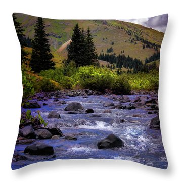 Throw Pillow featuring the photograph Summer At The Animas River by Ellen Heaverlo