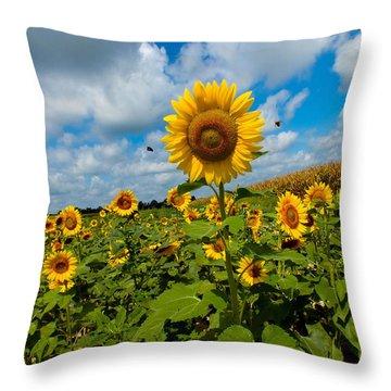Summer At The Farm Throw Pillow