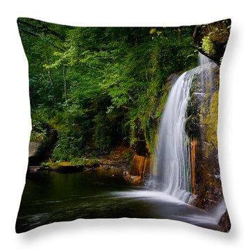 Throw Pillow featuring the photograph Summer At Wolf Creek Falls by Rikk Flohr