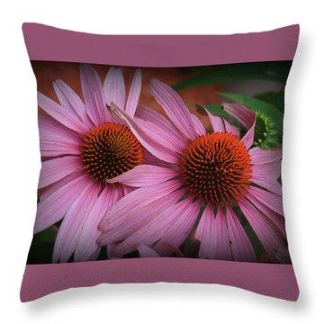 Summer Beauties - Coneflowers Throw Pillow