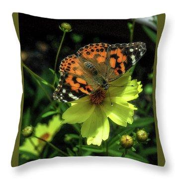 Throw Pillow featuring the photograph Summer Beauty by Bruce Carpenter