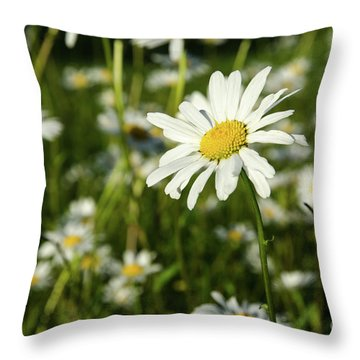 Throw Pillow featuring the photograph Summer Beauty by Kennerth and Birgitta Kullman